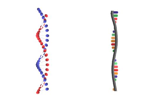 Nucleic Acids Image