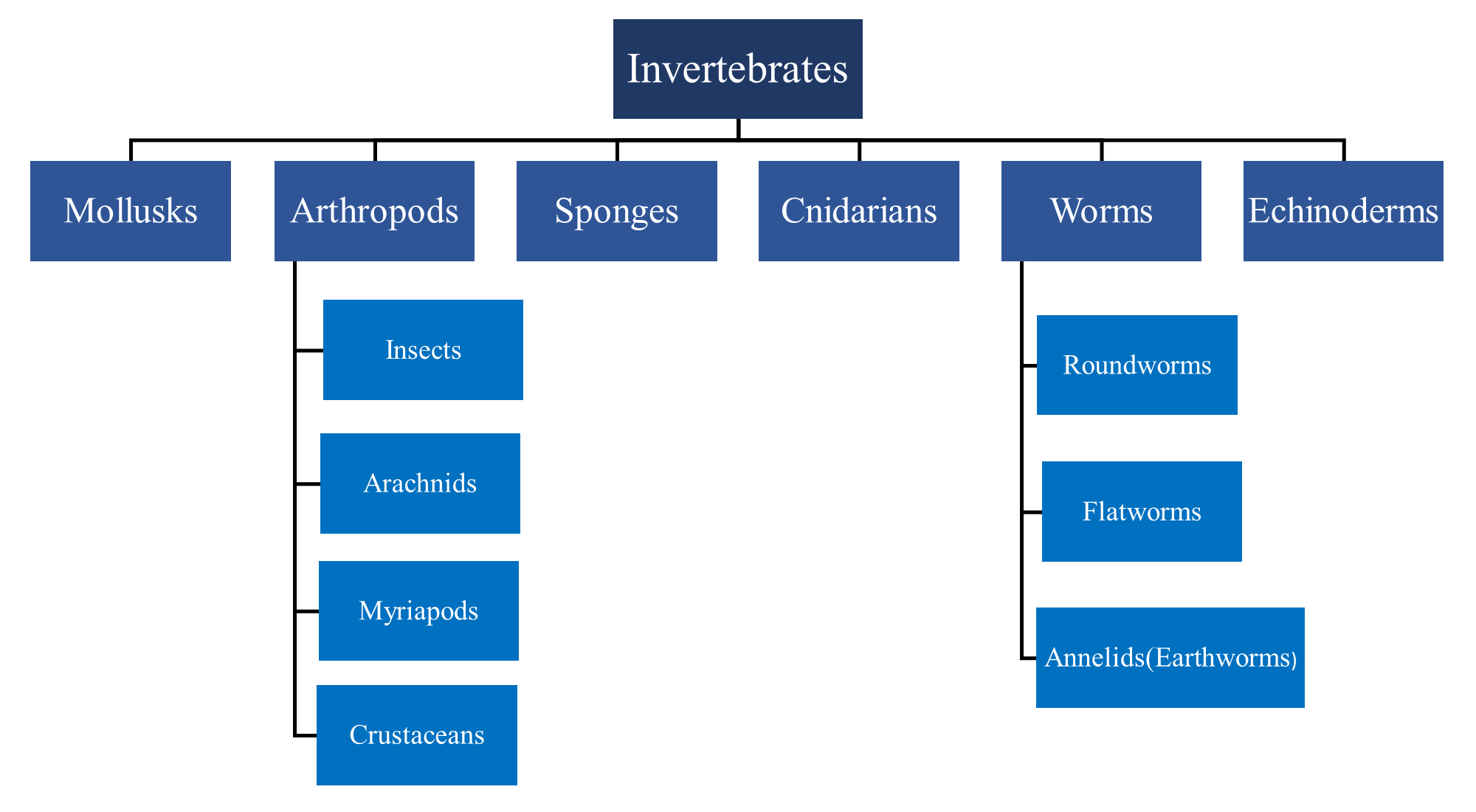 Classification of Invertebrates Paint